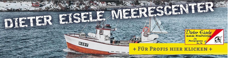 Dieter Eisele Angelgeräte Pilker Meeresangelköder Gummifische Meeresvorfächer Zubehör für Meeresangler im Angelshop Dieter Eisele günstig online bestellen