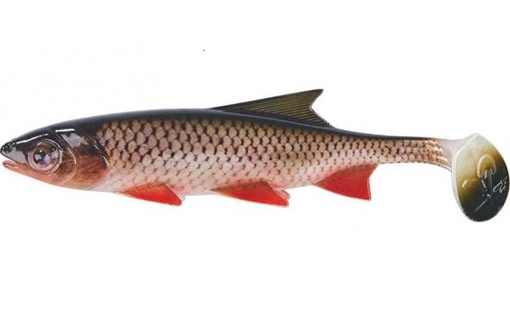 Clone Shad Döbel 6,5cm Angelköder Gummifisch zum Angeln auf Raubfische